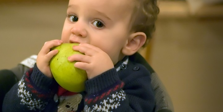 Toddler eating pear